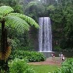 Millaa-Millaa-Falls